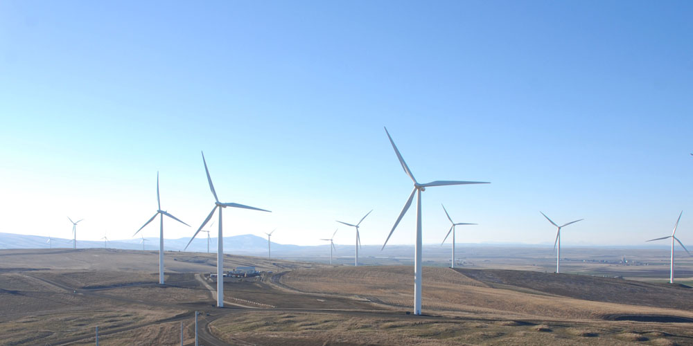 Wind resource assessment software for wind farm development - WindFarmer: Analyst